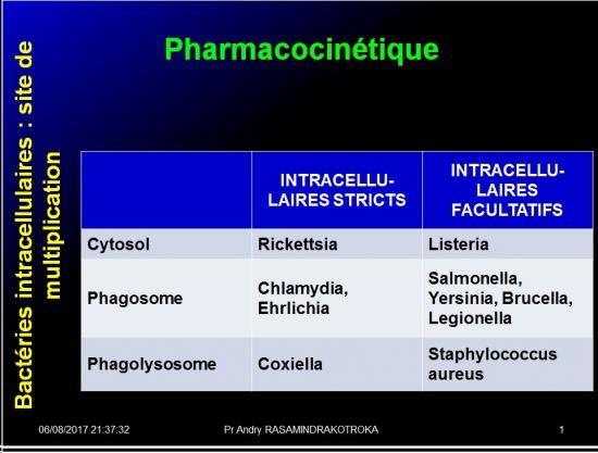 Antibiotiques 31
