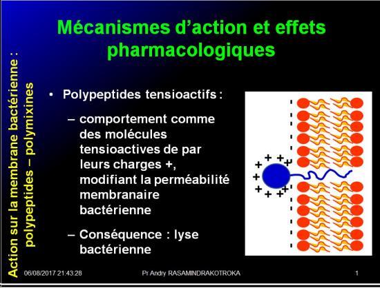Antibiotiques 39
