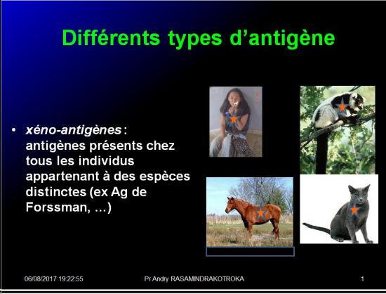 Antigènes 16