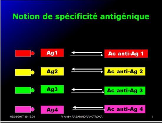 Antigènes 8