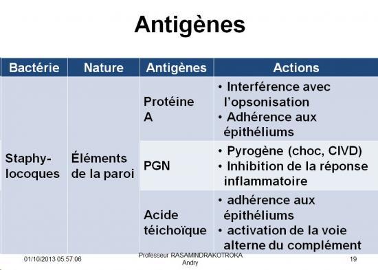 Antigènes bactériens 8