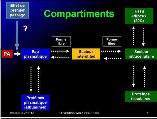 Biodisponiblité et bioéquivalence des médicaments 8