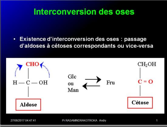 Biomolécules glucidiques 17