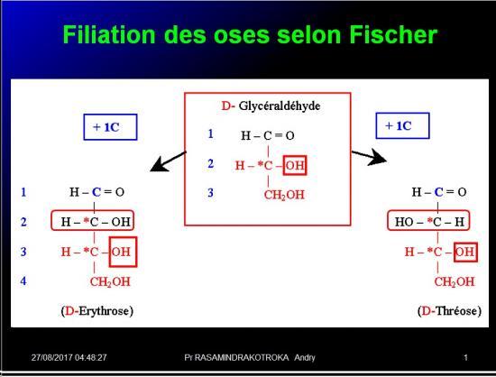 Biomolécules glucidiques 18