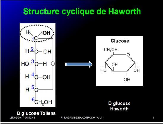 Biomolécules glucidiques 23