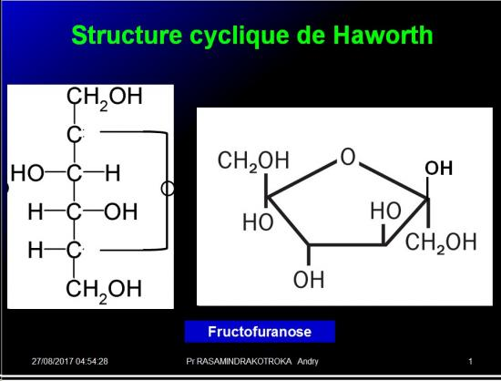 Biomolécules glucidiques 24