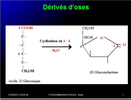 Biomolécules glucidiques 32