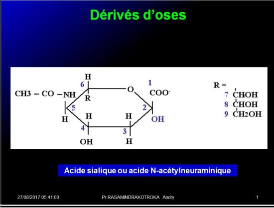 Biomolécules glucidiques 34