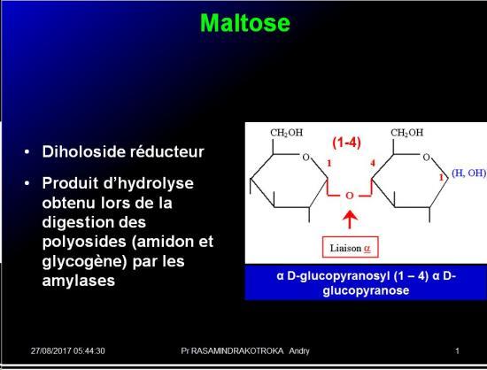 Biomolécules glucidiques 38