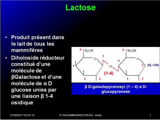 Biomolécules glucidiques 39