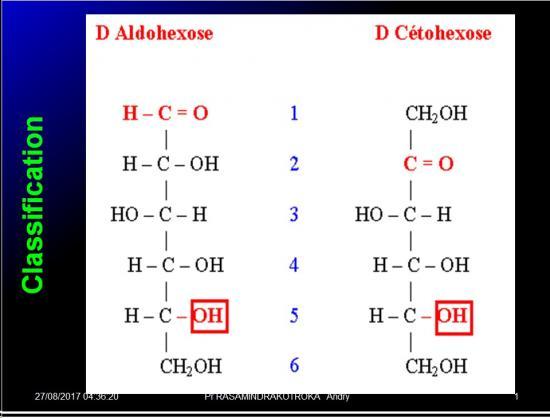 Biomolécules glucidiques 4
