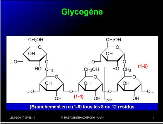 Biomolécules glucidiques 42