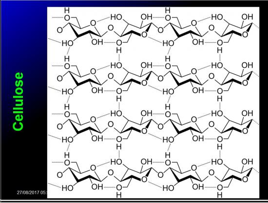 Biomolécules glucidiques 46