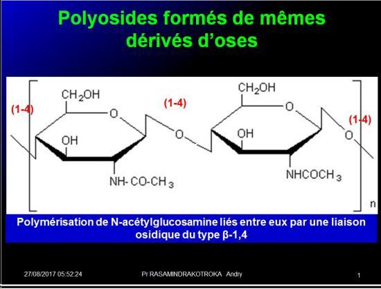 Biomolécules glucidiques 47