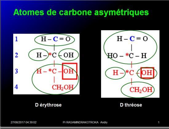 Biomolécules glucidiques 7