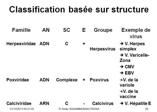 Classification et taxonomie des virus 8