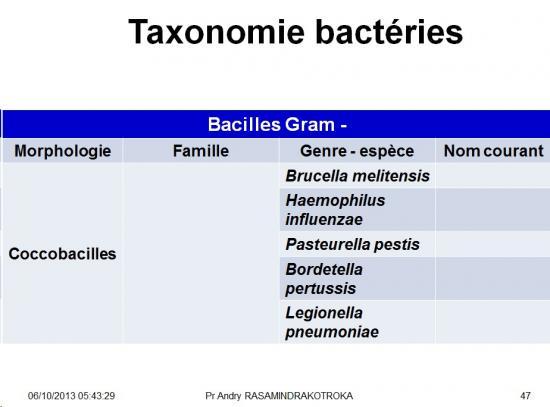 Classification - taxonomie des bactéries 10