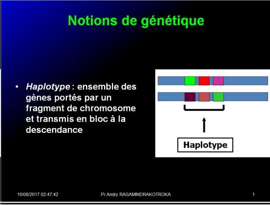 Complexe majeur d'histocompatibilité humain 9