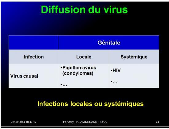 Evolution des virus dans l'organisme 14