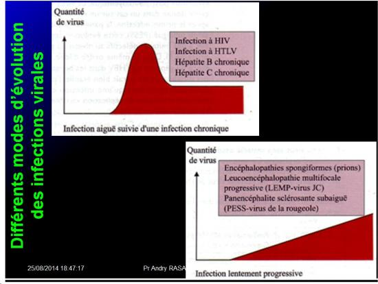 Evolution des virus dans l'organisme 18