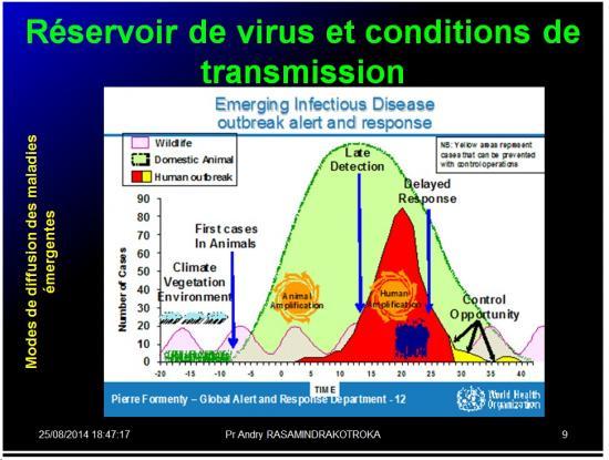 Evolution des virus dans l'organisme 3