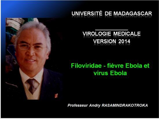 Filoviridae - virus Ebola 1