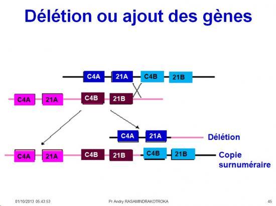 Génétique virale 9