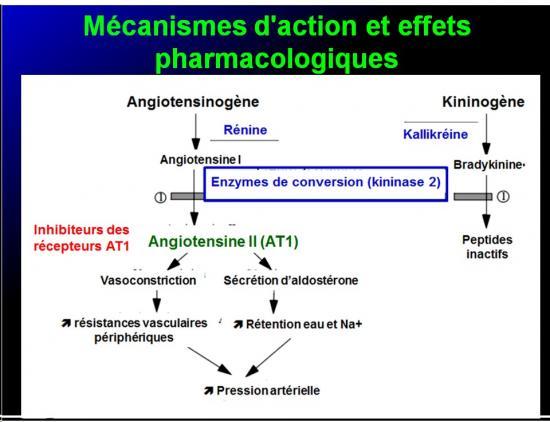 Images sélectionnées IEC et inhibiteurs AT1 10