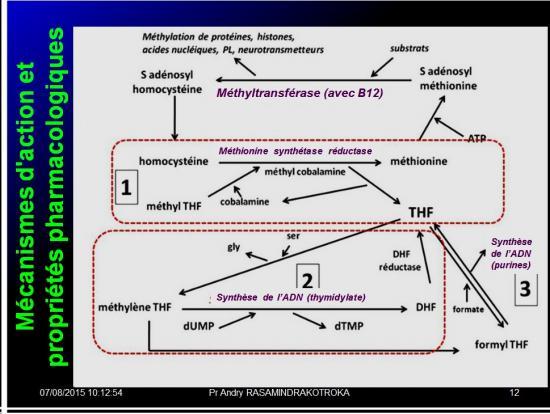 Images sélectionnées médicaments antianémiques15