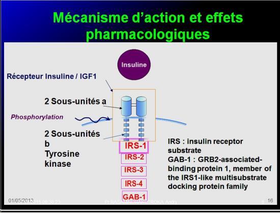 Images sélectionnées Médicaments antidiabétiques8