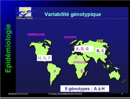 Images sélectionnées virus des hépatites10