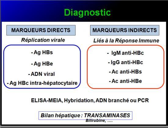 Images sélectionnées virus des hépatites12