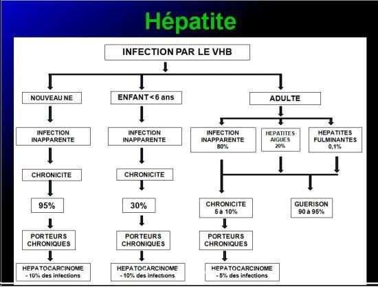 Images sélectionnées virus des hépatites8