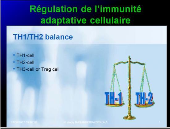 Immunité adaptative 25