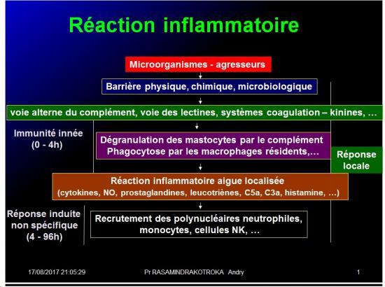Immunité naturelle 22