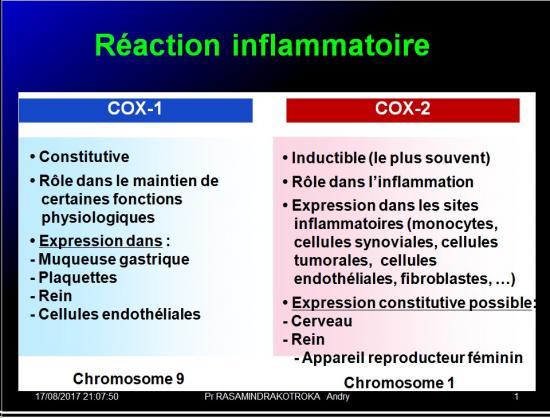 Immunité naturelle 25