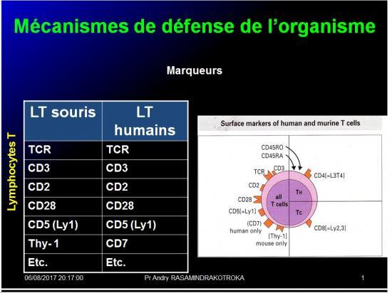 Introduction à l'Immunologie clinique 11