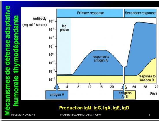 Introduction à l'Immunologie clinique 20