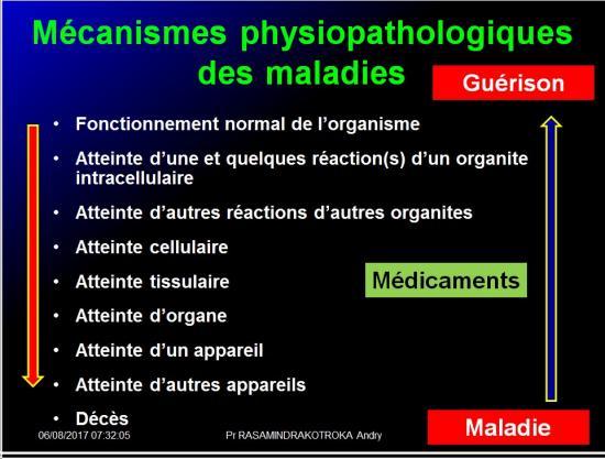 Introduction à la pharmacologie 10