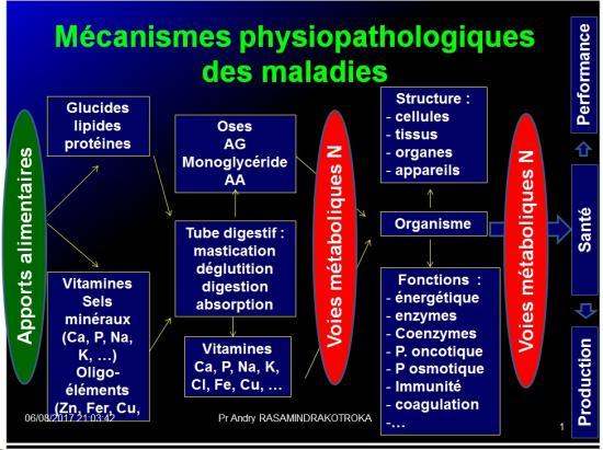 Introduction à la Pharmacologie spéciale 2