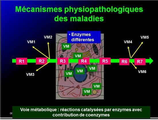 Introduction à la Pharmacologie spéciale 3