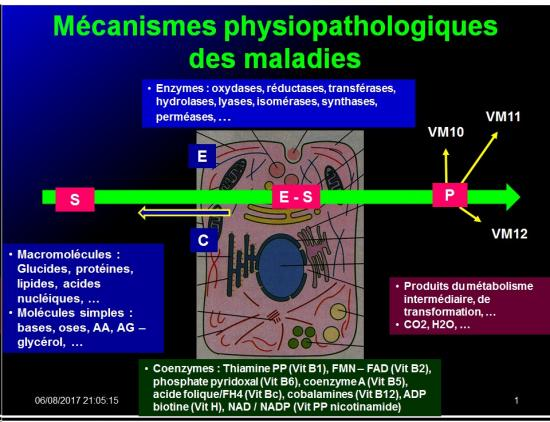Introduction à la Pharmacologie spéciale 4