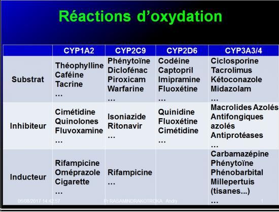 Métabolisme des médicaments 6