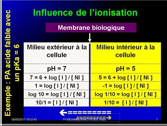 Modalités de passage des médicaments à travers membrane biologique et épithélium 10