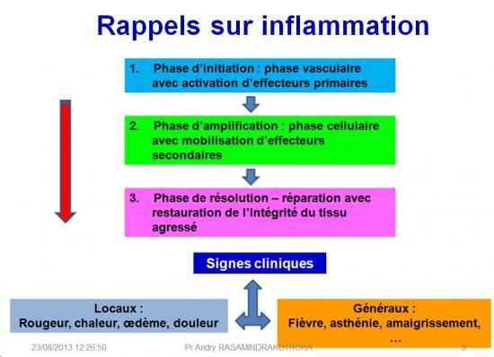 Molécules antiinflammatoires 3