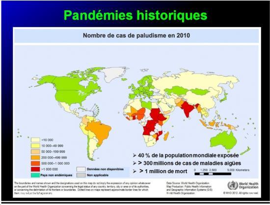 Pandémies humaines 22