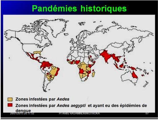 Pandémies humaines 24