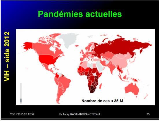 Pandémies humaines 28