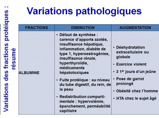 Protéines plasmatiques 11