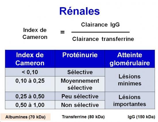 Protéines urinaires 9